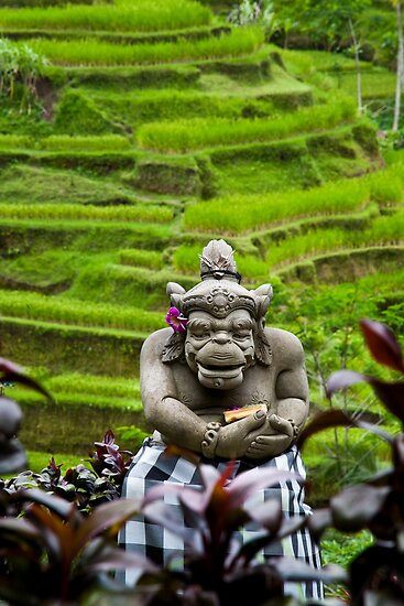 Gods Watch, Bali by Chris Westinghouse