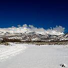 silent wilderness by russtokyo