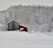 Resting Farm in Winter by Joseph T. Meirose IV
