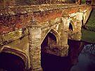 Bridge at Eltham Palace by Lisa Hafey