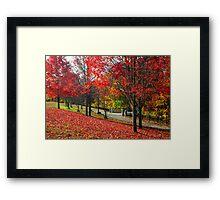 New England Autumn  Framed Print