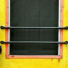 simply a door by Lynne Prestebak