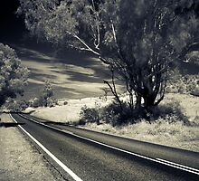 Get out on the highway.. by Angie Muccillo