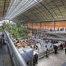 Puerta de Atocha Railway Station Hall #1 by servalpe
