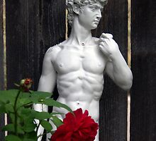 Garden Statue of Michelangelo's David with Rose by TangledWood
