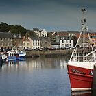 Busy harbour by weecoughimages
