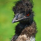 Bad Hair Day by RedMann