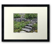There May Be Trolls 11 Framed Print