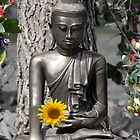 Glasgow Buddha with Sunflower by simpsonvisuals