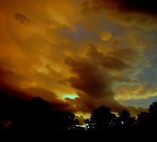 Flying Pig Storm Cloud by SWWinchell