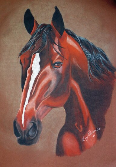 Stockhorse by Penny Edwardes