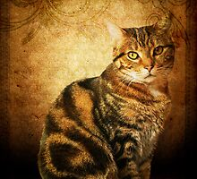 Evadora ~ Feline Portrait by Stephanie Reynolds