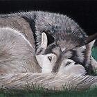 Preparing for Sleep - Wolf by Heather Ward