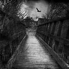 Bridge over troubled waters by Nicola Smith