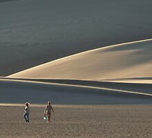 #546   Two On The Dunes by MyInnereyeMike