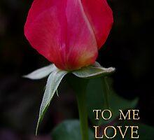 rose bud, me love you by dedmanshootn