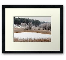 Old lake in winter time Framed Print