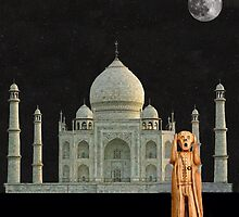 The Scream World Tour India Taj Mahal by Eric Kempson