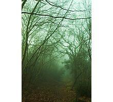 Mistery Path Photographic Print