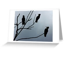Silhouette Sulphur Crested Cockatoos Greeting Card