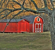 Another Couple of Red Barns by Chelei