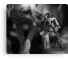 Chihuahua and the Quality Control Message Canvas Print