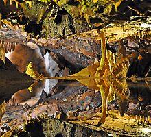 Cheesy rocks in Cheddar Gorge by paultclarke