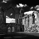 Haughmond Abbey by Paul Whittingham
