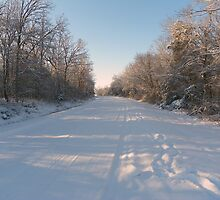 Early Morning, Heading South in the Snow by David  Hughes