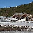 Winter in the Sierra by Patty (Boyte) Van Hoff
