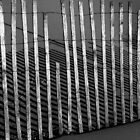 Fence on a Beach on Lake Michigan by Randall Nyhof