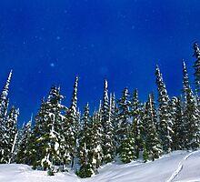Snow! by Richard Lam