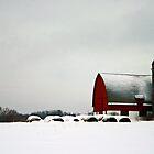 dead of winter by Lynne Prestebak