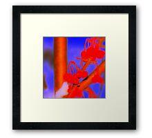 Baby Blue Cherry Pop Framed Print
