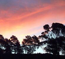 Sunset February 13, Lilydale, Tasmania by RainbowWomanTas