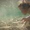 Water Effects - Tam Locke