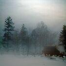 Blue Fog IV by Mary Ann Reilly