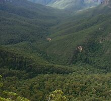 The Grose Valley from Evan's Lookout by orkology