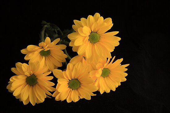 A bunch of Happiness by Susan van Zyl
