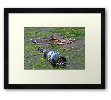 The future of wildlife!! Framed Print