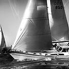 Dreaming of Summer Sailing by linaji