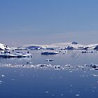 Icebergs in Antarctica by rhallam