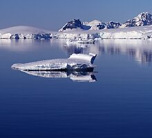 Icebergs in Antarctica 4 by rhallam