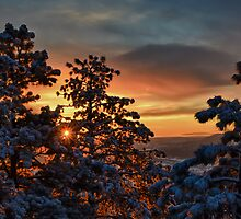 Fiery Dawn on New Snow by Mike Hendren
