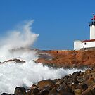 Wave Breaks on Eastern Point - Gloucester, Massachusetts by Steve Borichevsky