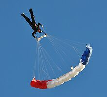 skydiving by venny