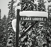 Winter White In Louise  by Trevor  Capstick