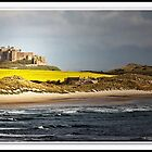 The rape of Bamburgh Castle by almaalice