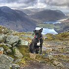 Tarn On Fleetwith Pike by Jamie  Green