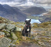 Tarn On Fleetwith Pike by VoluntaryRanger